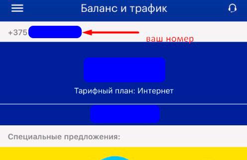 как посмотреть свой номер лайф в приложении
